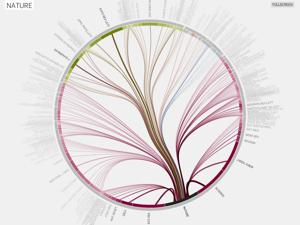 Dependency graphs between scientific disciplines and journals